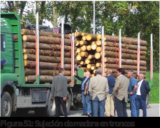 Figura 51: Sujeción de madera en troncos