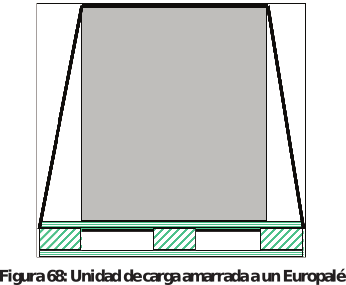 Figura 68: Unidad de carga amarrada a un Europalé